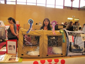 EXPO NARBONNE