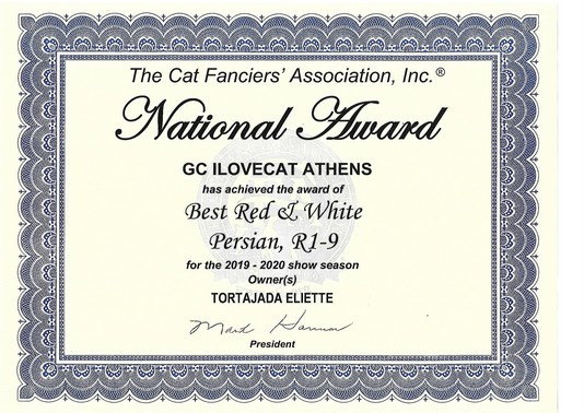 national award ilovecat athens of oasis bleue